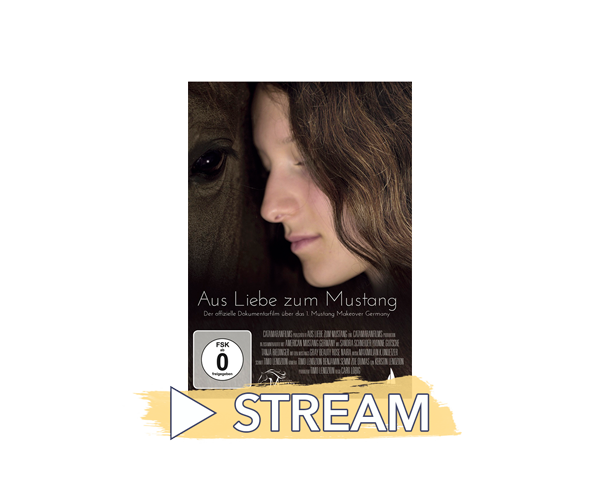 Filmcover-Streams-ALzM-klein